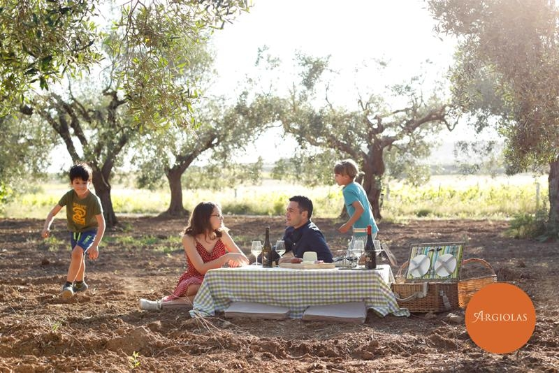 Aperitif in the Vineyard