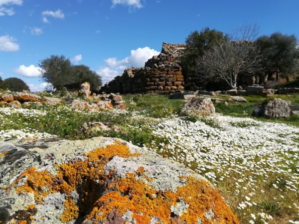Travelling with Friends - Culture & Beaches Sardinia Private Tours